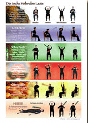 Poster: The Six Healing Sounds - Chart